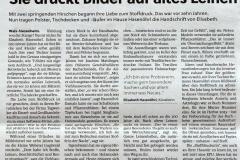 Flachgauer-Nachrichten-1